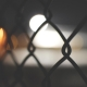 Fence with lights in the background